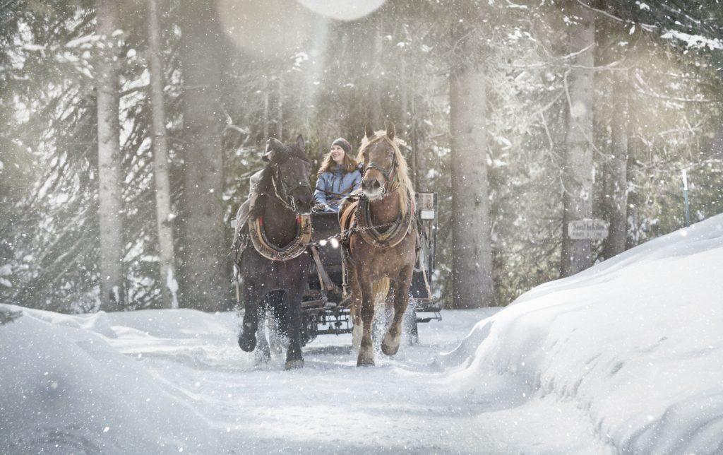 Pferdeschlitten, Copyright: saalbach.com, Mirja Geh